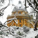 Image of snowy branches with the Radcliffe Camera in the background